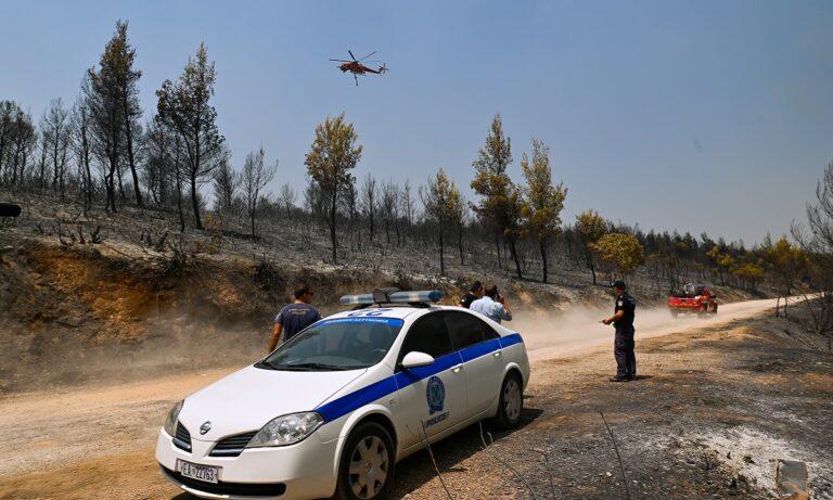Φωτιά – Αττική: Εντολή εκκένωσης για Καπανδρίτι, Πολυδένδρι – Κατευθυνθείτε προς Βαρνάβα, Νέα Μάκρη