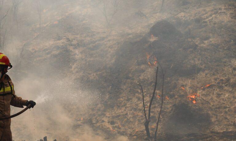 Φωτιά στη Φωκίδα: Πάνω από 8 χλμ. το πύρινο μέτωπο