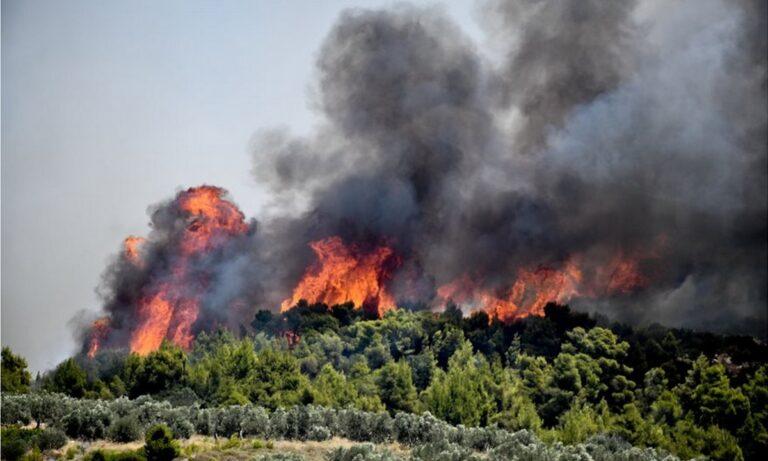 Φωτιά: Πολύ υψηλός κίνδυνος πυρκαγιάς (κατηγορία κινδύνου 4) προβλέπεται την Κυριακή 15 Αυγούστου 2021 για τις παρακάτω περιοχές της χώρας.