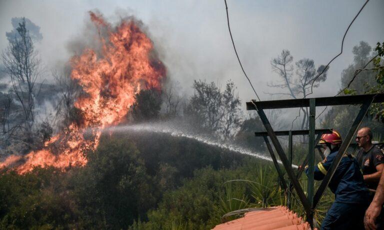 Φωτιά Βίλια: Μεγάλη η μάχη με τις φλόγες – Συνεχείς οι αναζωπυρώσεις