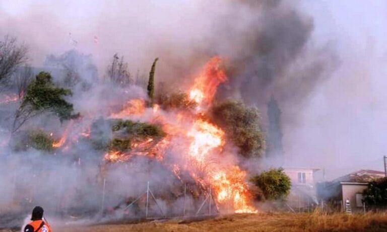 Φωτιά στην Αρχαία Ολυμπία: Αίσια έκβαση με τους αγνοούμενους