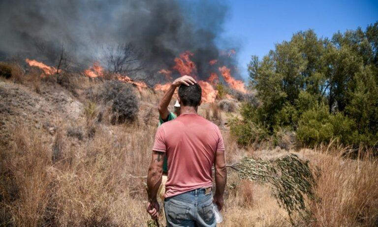 Φωτιά Βίλια: Εκτός ελέγχου η πυρκαγιά – Μάχη με τις φλόγες για 2η μέρα