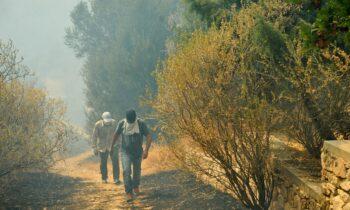 Φωτιές: Τους ζητούν να ψάξουν στις στάχτες έγγραφα για αποζημιώσεις