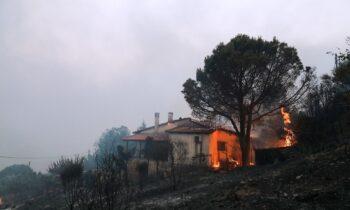 Η Ελλάδα δοκιμάζεται έντονα από εκατοντάδες πυρκαγιές που την κατακαίουν τις τελευταίες ημέρες και ο σύνδεσμος οπαδών του Άρη Super-3 βρίσκεται στο πλευρό των πληγέντων.