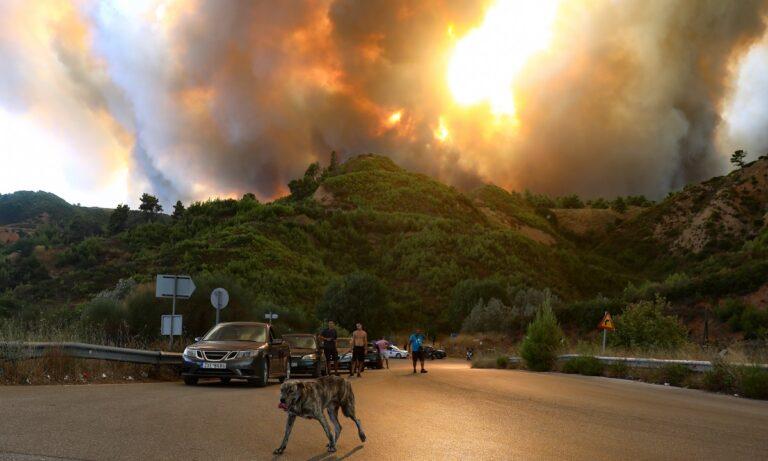 Φωτιά – Τατόι: Δίπλα στο βασιλικό κοιμητήριο και 100.000 βασιλικά αντικείμενα οι φλόγες