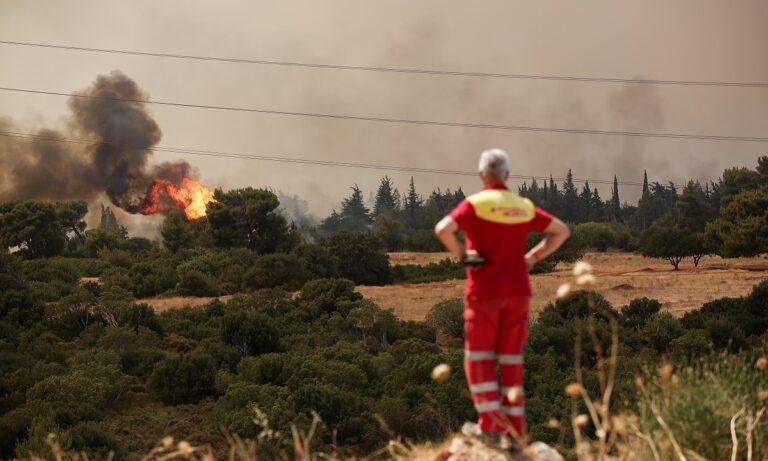 Φωτιά Βαρυμπόμπη: Έφτασε στα Βασιλικά Κτήματα! Εκρήξεις παντού, φεύγουν οι κάτοικοι!