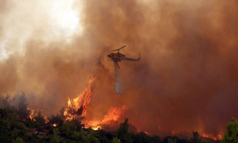 Τα Βίλια ξανακαίγονται: Για οκτώ μέρες βασανίζονται οι κάτοικοι με φωτιές και ένα ανίκανο επιτελικό κράτος