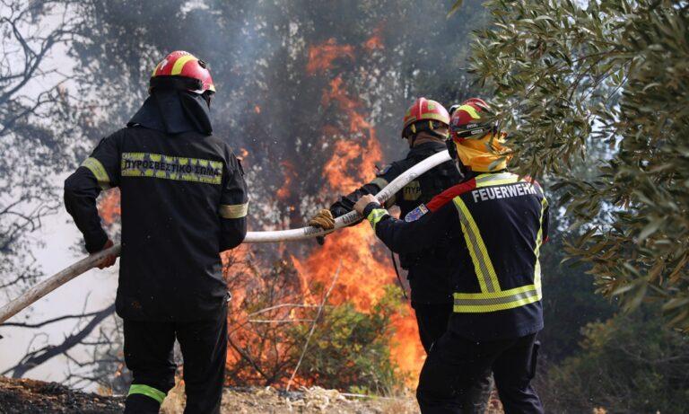 Συγκλονίζει χάρτης που καταγράφει την καταστροφή που άφησαν πίσω τους έχουν αφήσει πίσω τους οι τρομακτικές φωτιές σε όλη την Ελλάδα.