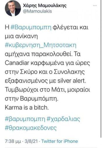 Αθλιότητα από τον βουλευτή του ΣΥΡΙΖΑ Χάρη Μαμουλάκη για την φωτιά στη Βαρυμπόμπη...