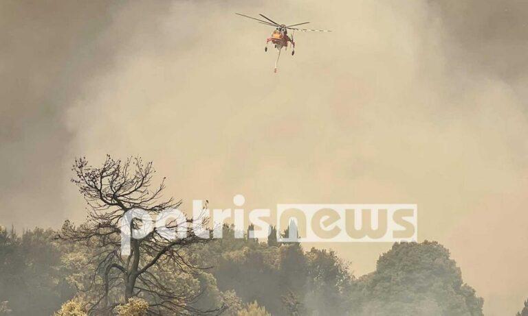 Φωτιά στην Ηλεία: «Αποκαΐδια πάνω από 200.000 στρέμματα» – «Αν φεύγαμε θα καιγόντουσαν τα σπίτια μας»