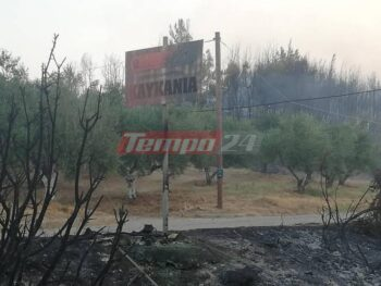 Το χωριό Καυκανιά δεν κατάφερε να γλιτώσει από το μένος της πυρκαγιάς που στην κυριολεξία το σάρωσε. Σπίτια καταστράφηκαν ολοσχερώς, με τις στέγες να καταρρέουν και να απομένουν μόνο τα άδεια κουφάρια των τοίχων, που στέκουν ακόμα όρθια. Το χωριό εκκενώθηκε μετά από τεράστιες προσπάθειες και συνεχείς εκκλήσεις της Πολιτικής Προστασίας. Οι κάτοικοι του δεν ήθελαν να εγκαταλείψουν τις περιουσίες τους, αλλά να μείνουν εκεί για να τις σώσουν. Άλλοι φοβούνται πως αν φύγουν θα εγκλωβιστούν στον δρόμο αφού η φωτιά πλησίαζε από παντού.