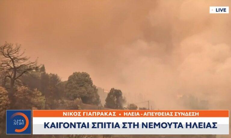 Φωτιά Ηλεία: Χάθηκε μέσα στους καπνούς και τις φωτιές η Νεμούτα