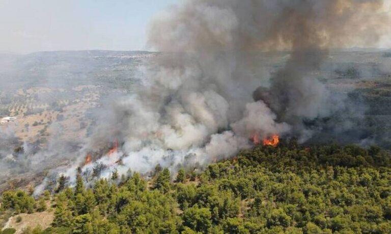 Δυτική Μακεδονία: Τρία τα πύρινα μέτωπα σε Κοζάνη και Γρεβενά!