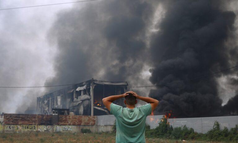 Videos που σοκάρουν απο τις φωτιές σε Αττική, Εύβοια και Ηλεία