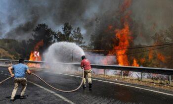 Τουρκία: Στους οκτώ ανέρχονται οι νεκροί από τις δασικές πυρκαγιές στα νότια παράλια, ενώ οι πυροσβέστες δίνουν μάχη για πέμπτη ημέρα.