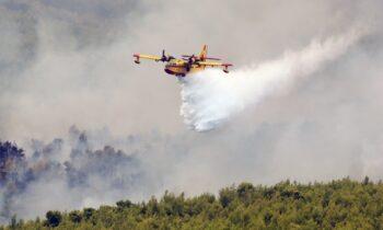 Φωτιά Βίλια: Συνεχείς οι αναζωπυρώσεις - Μεγάλη μάχη με τους άνεμους