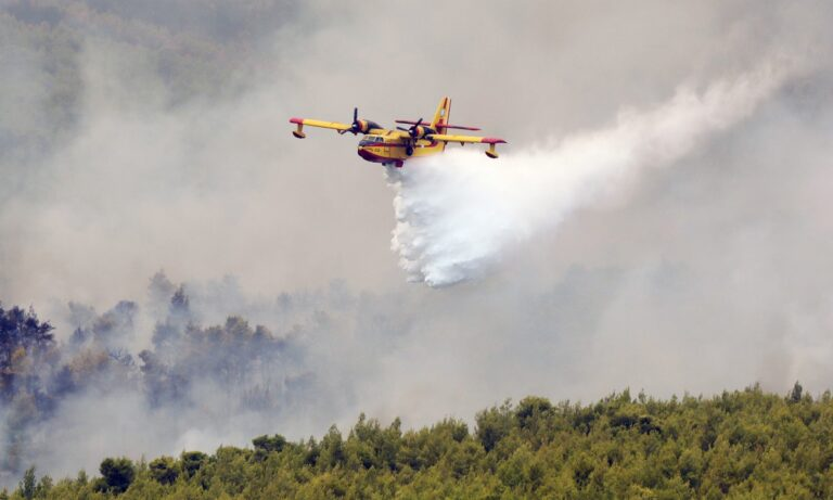 Φωτιά Βίλια: Συνεχείς οι αναζωπυρώσεις – Μεγάλη μάχη με τους άνεμους
