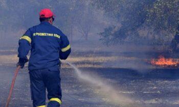 Συναγερμός έχει σημάνει στην Πυροσβεστική για τη φωτιά στην Πάρνηθα, ενώ πυρκαγιά έχει ξεσπάσει και στον Κάλαμο.