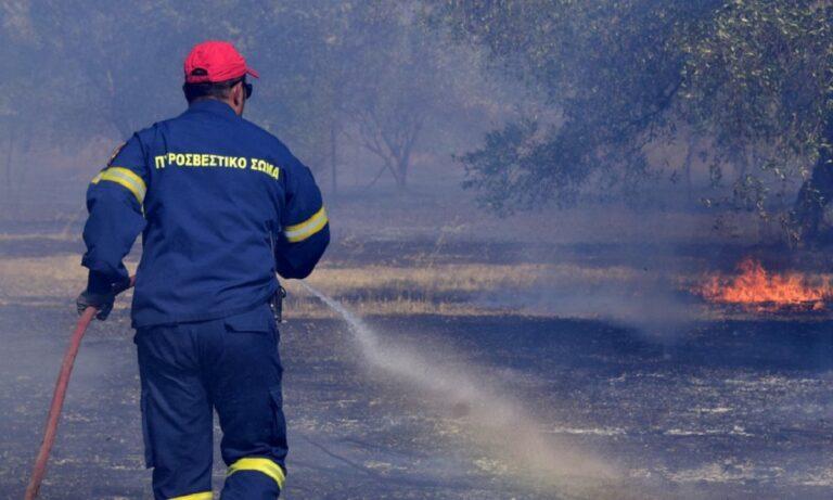 Ξέσπασε φωτιά στην Πάρνηθα – Στις φλόγες και ο Κάλαμος