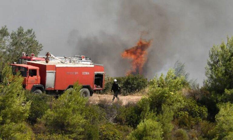 Κρήτη: Φωτιά σε ορεινή περιοχή στα Χανιά – Στo σημείο η πυροσβεστική