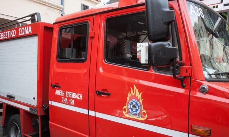 Χανιά: Φωτιά σε δασική έκταση