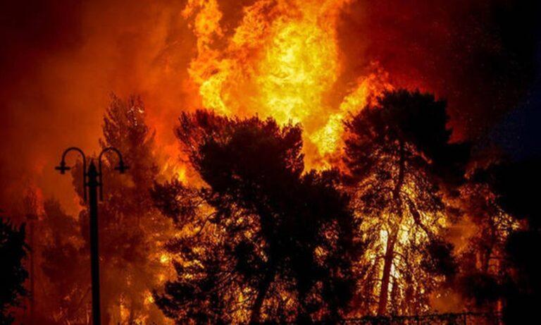 Πυρκαγιές: H αποτυχία του επιτελικού κράτους σε νούμερα – Στάχτη το 16% των δασών της Αττικής λέει το meteo!
